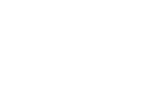 systemprofwhite